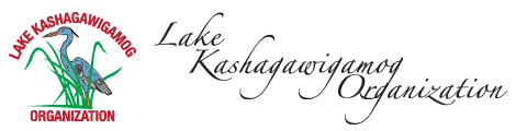 Lake Kashagawigamog Organization.